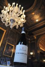 VIN Wine in Venice
